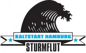 Elbtsunami