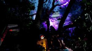 Die Magie der milden Nächte und Lichtspiele auf dem Dockville-Gelände