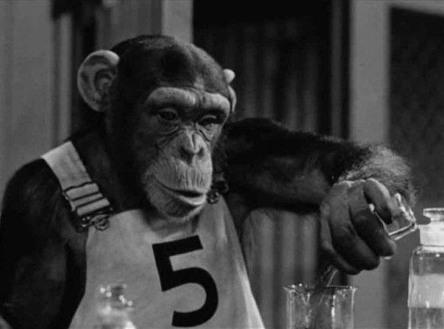 Mr Ape
