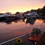 Sonnenaufgang über Moorfleet