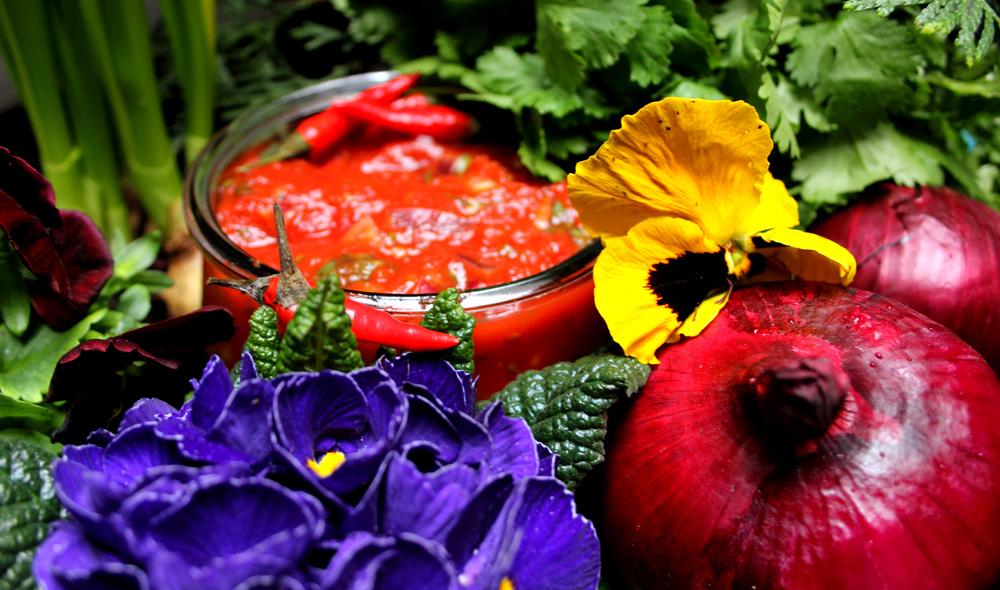 Tomaten-Salsa in zivilisierter Wildbahn