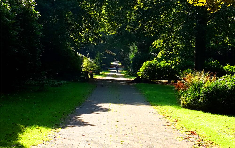 Spaziergänge werden zu Wanderungen