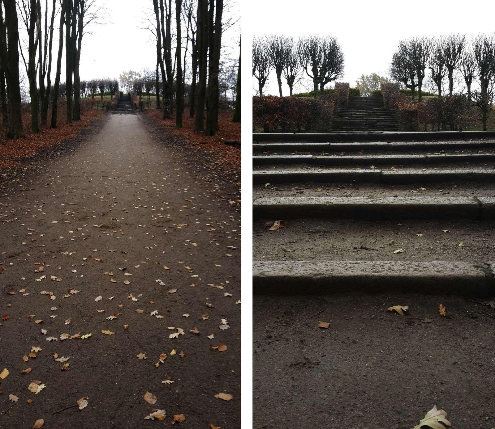Treppe zum Tutenberg, vereinzelt Laub