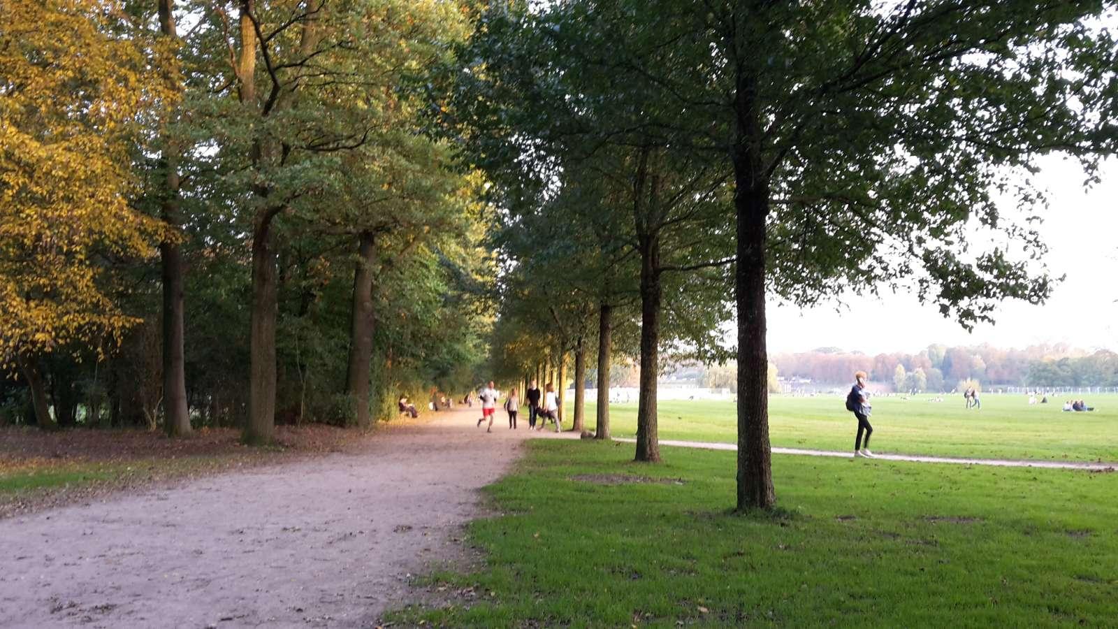 Große Wiese im Stadtpark