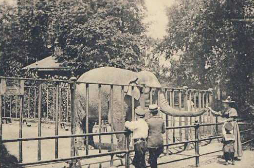 Hagenbecks Tierpark um 1900 / [Public domain]